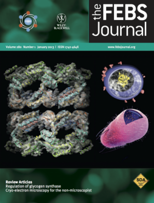 The FEBS Journal, January 2013